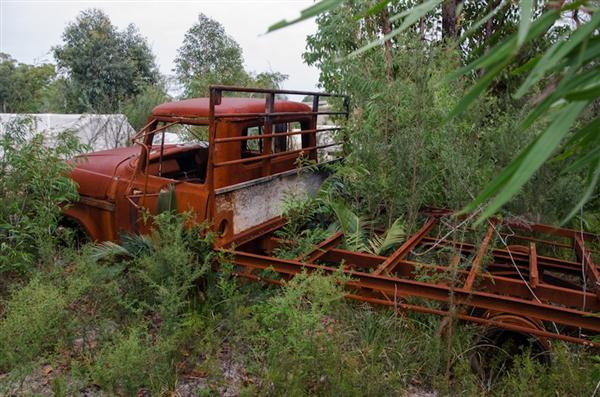 Dodge Truck rusting away in the bush