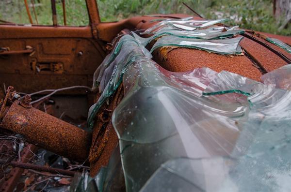 Dodge Truck Overgrown 4 New