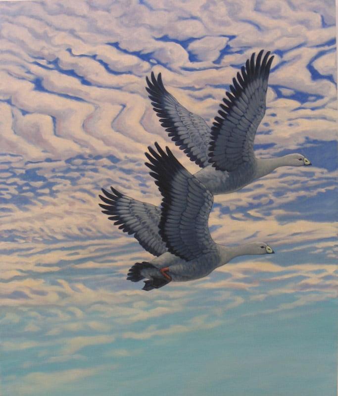 Susan Tingay   Flying West Fine Art