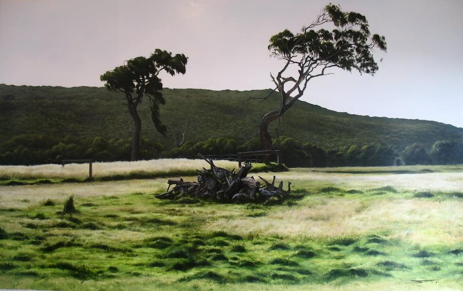 Paul Scott Trees Hamelin Bay 190X120Cm 16600