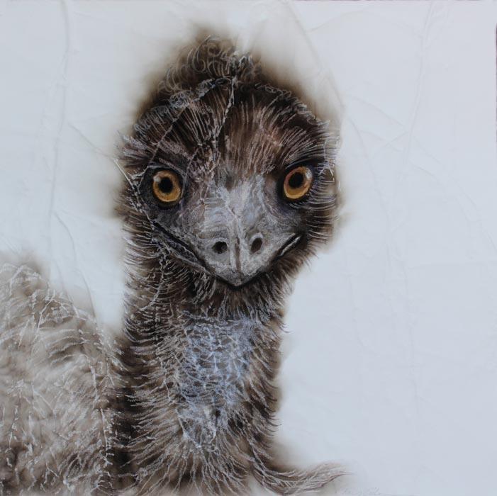 Kay Gibson Emu1 40X40Cm