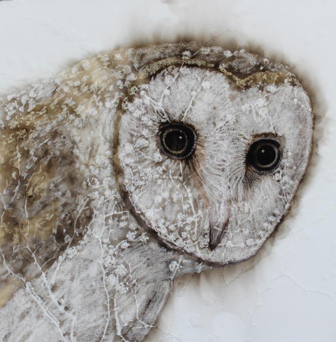 Kay Gibson Ethereal Barn Owl 40X40Cm