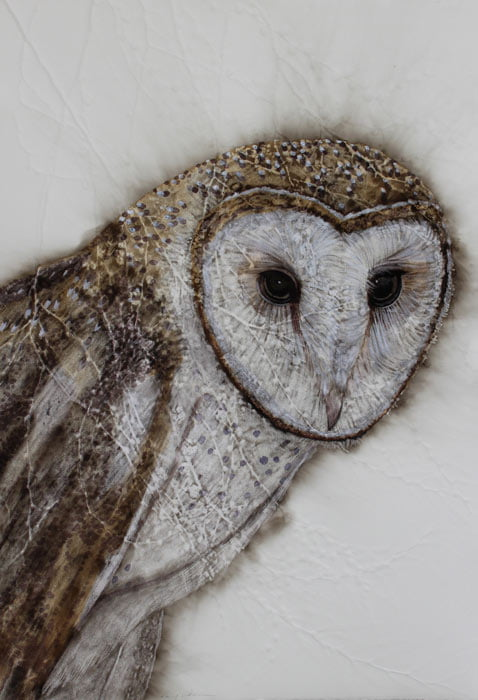 Kay Gibson Pensive Barn Owl 53X78Cm