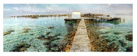 Larry Mitchell Big Rat Abrolhos Islands 3mx1m