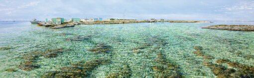 Larry Mitchell Burnett Island Lagoon 3M X 9M