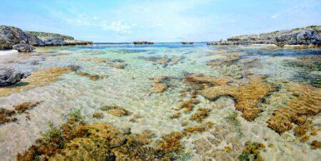 Larry Mitchell Chicken Reef 240x120cm