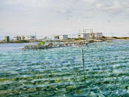 Larry Mitchell The Nook Abrolhos Islands Oil Painting Detail 1