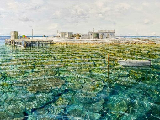 Larry Mitchell The Nook Abrolhos Islands Oil Painting Detail 2