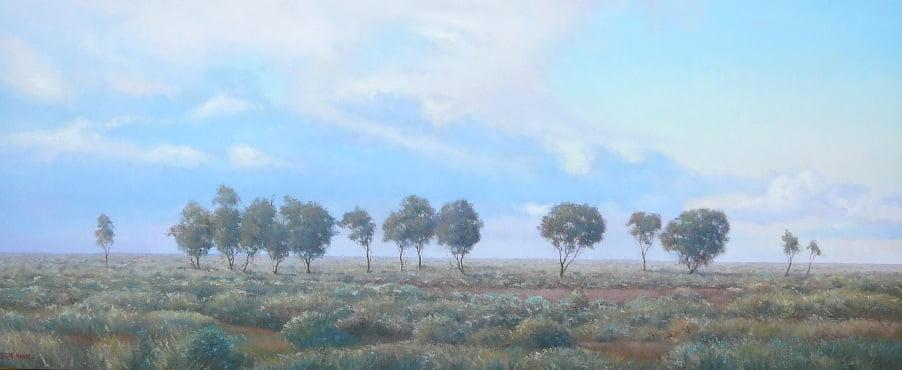 Saltbush Plain Cropped