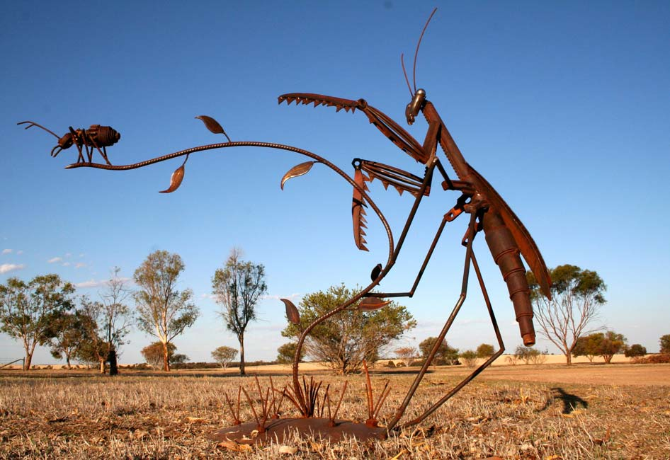 Jordan Sprigg   Preying Mantis Fine Art