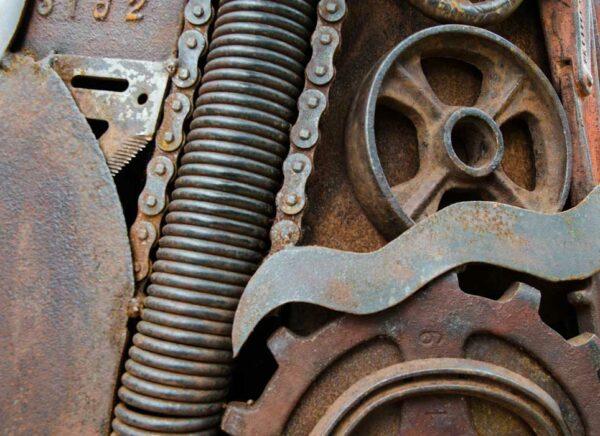 Jordan Sprigg Stag Detail 1
