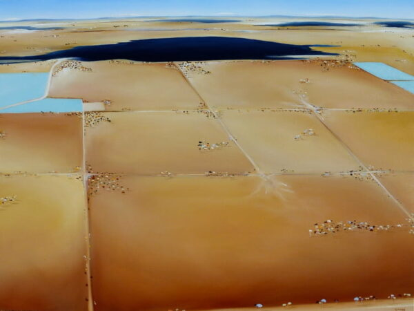 Shane Moad Marsh Land In The Wheatbelt 120X92Cm