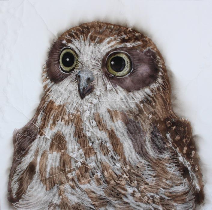Kay Gibson Spero Noctura Hope Owl 40 X 40Cm Frame 1550