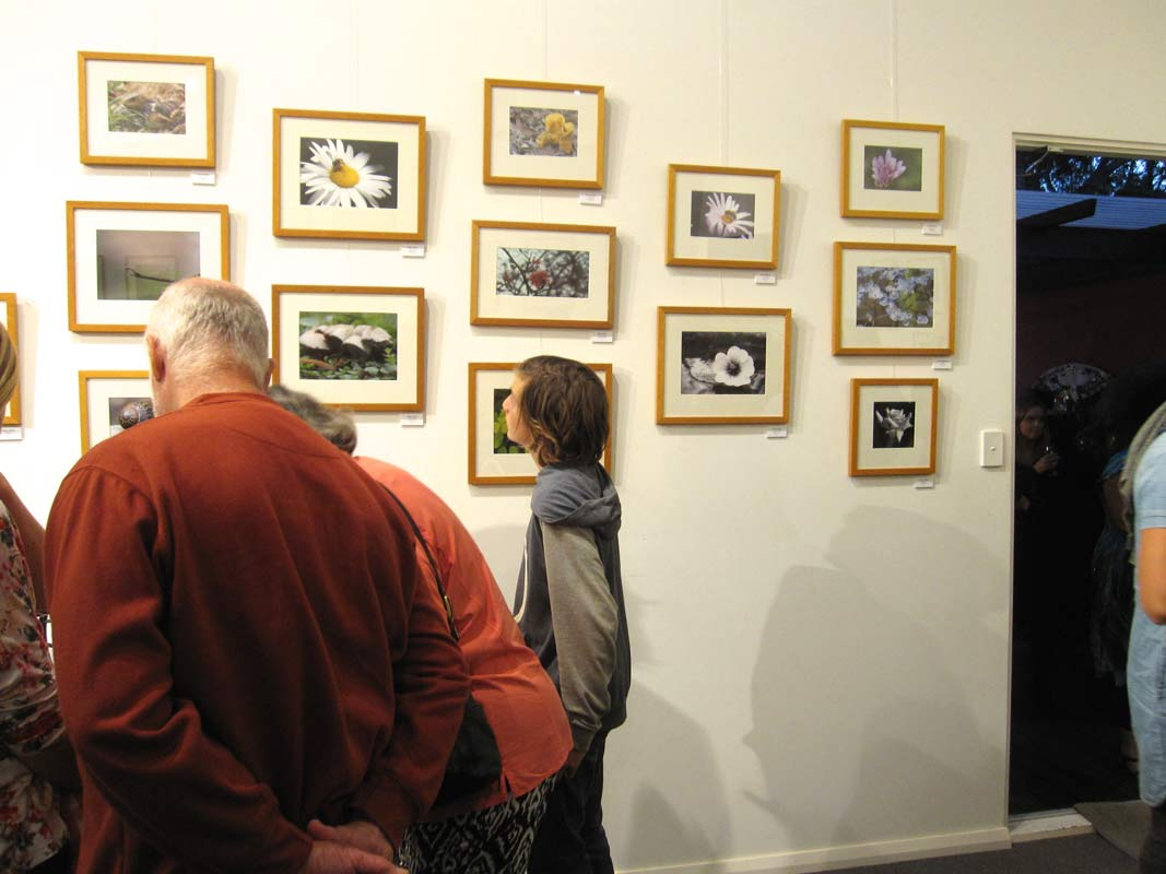 Mrshs Creating Identity Exhibition 2015 Crowd 2