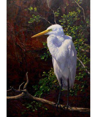 Andrew Tischler   Egret Fine Art