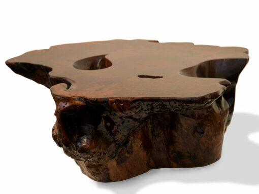 Jarrah Burl Trunk Coffee Table Side 5