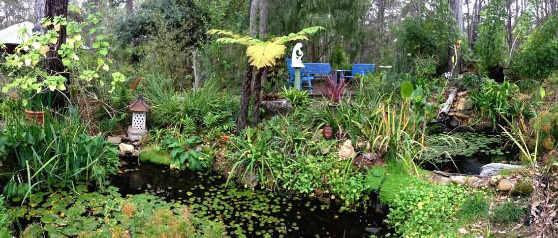 Garden Pond Copy