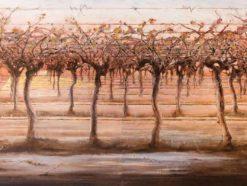 Jenny Sanderson Artist
