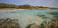 Larry Mitchell   Eagle Bay Summer Fine Art