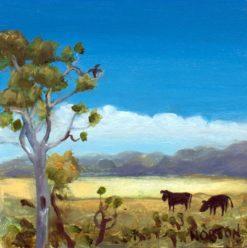 Helen Norton   Angus Cattle In Landscape Fine Art