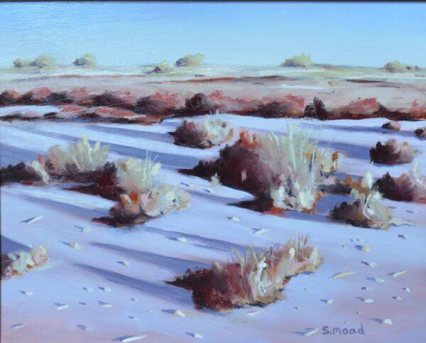 Sm46 Shane Moad Shadows In Saltbush Lake Ballard Detail 30X25Cm Artwork 1100 Scaled