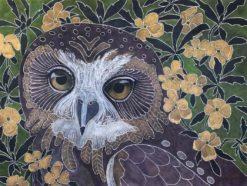 Kay Gibson   Southern Boobook Summer Fine Art