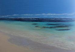 Ann Steer   Gnarloo Shore Line Fine Art
