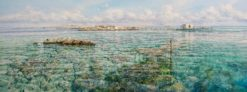 Larry Mitchell   Coronation Island Abrolhos Fine Art