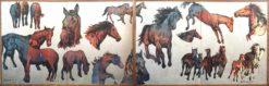 David Bromley Big Horses I II together 247x79