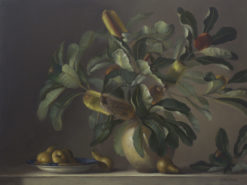 Philip Drummond   Banksia and Pears Fine Art
