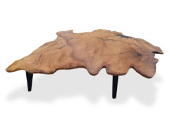 The Cove Burl Coffee Table Fine Art