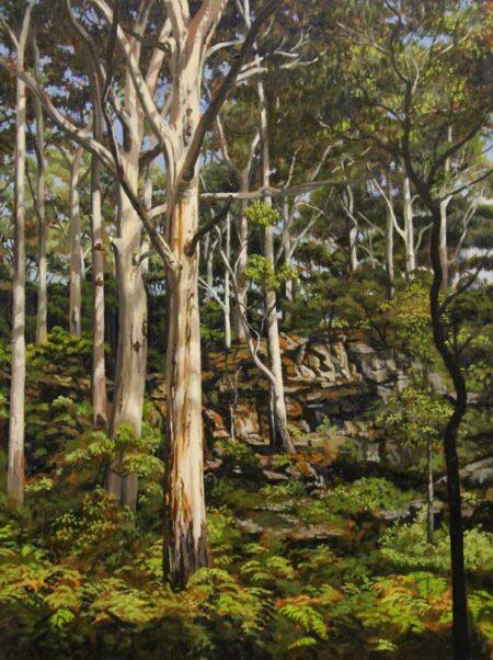 Cla09 Christine Lawrence Boranup Forest 2 22 8cm X 30 4cm