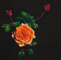 Katie Gordon Artist   Up Close & Personal Fine Art