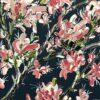 felicia aroney freedom painting