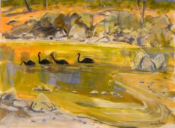 judy prosser swans on a murchison pool painting