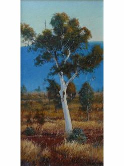 kerry nobbs white gum pilbara painting