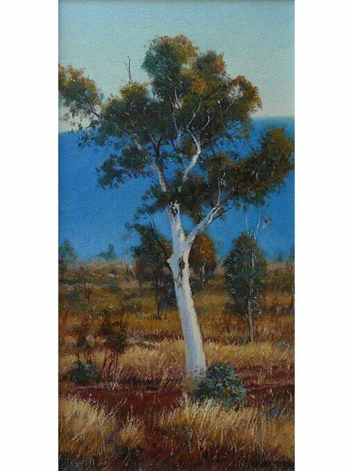Kerry Nobbs White Gum Pilbara Painting