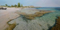 larry mitchell the basin rottnest painting