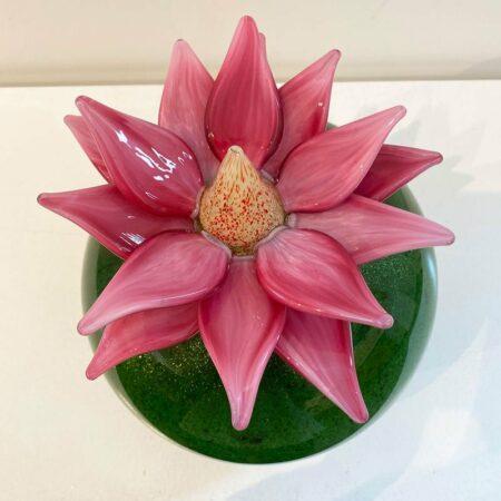 Eileen Gordon Water Lilly Pink Flower Top