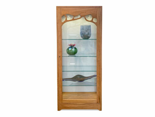 Canopy Glass Backed Display Cabinet Light