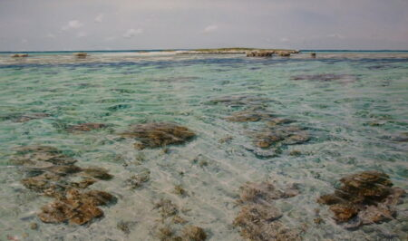 Larry Mitchell Abrolhos Resale 1500x900 25000