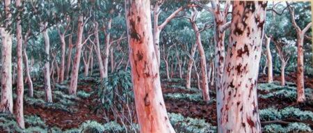 Susan Tingay Winter Glow 170x70cm 2500