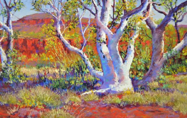 Shirley Fisher Pastel Art Dale S Gorge Snappy Gums