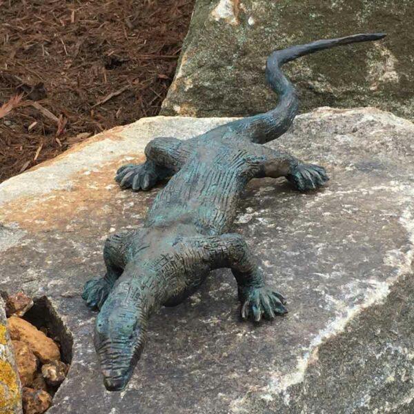 Brian Borschoff Monitor Lizard Outside On Rock